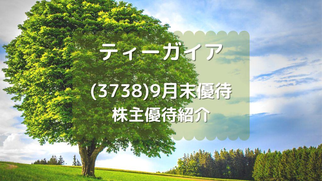 株式会社ティーガイア 株主優待
