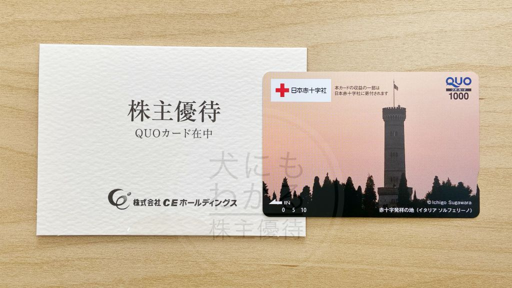 CEホールディングス 株主優待 QUOカード